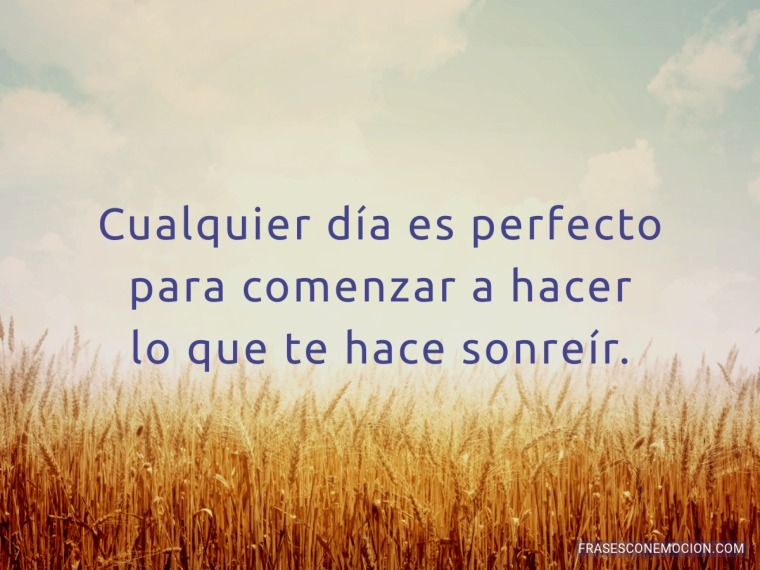 Cualquier día es perfecto...