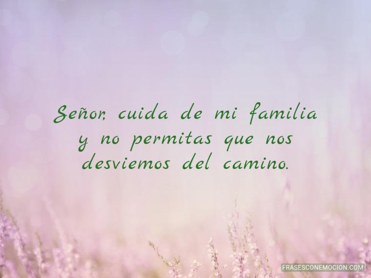 Cuida de mi familia...