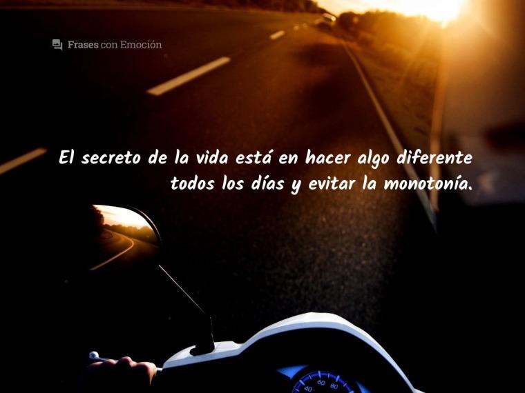 El secreto de la vida...