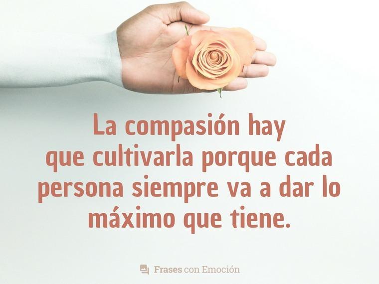 La compasión hay que cultivarla...
