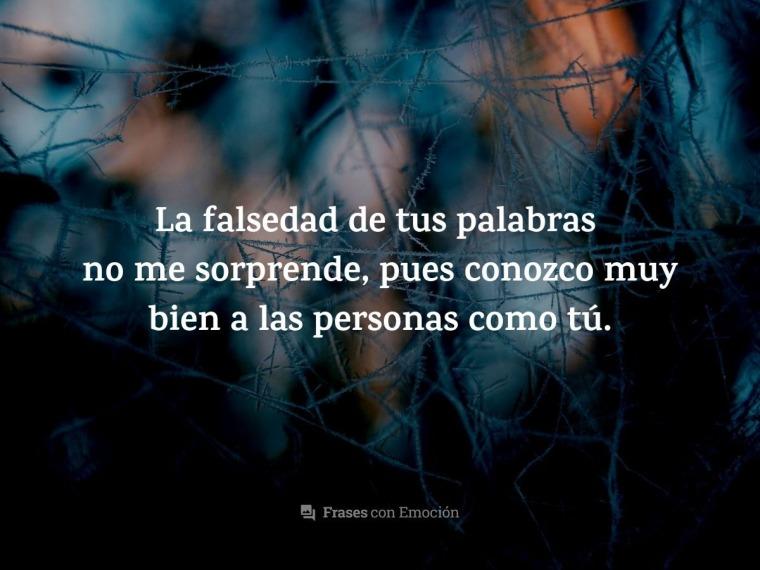 La falsedad de tus palabras...