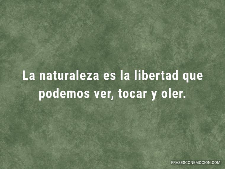 La naturaleza es la libertad...