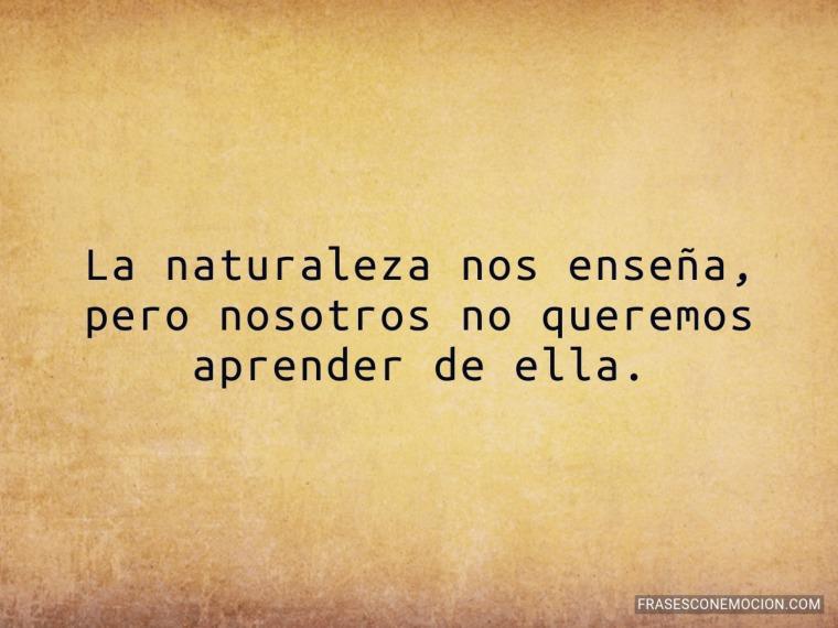 La naturaleza nos enseña...