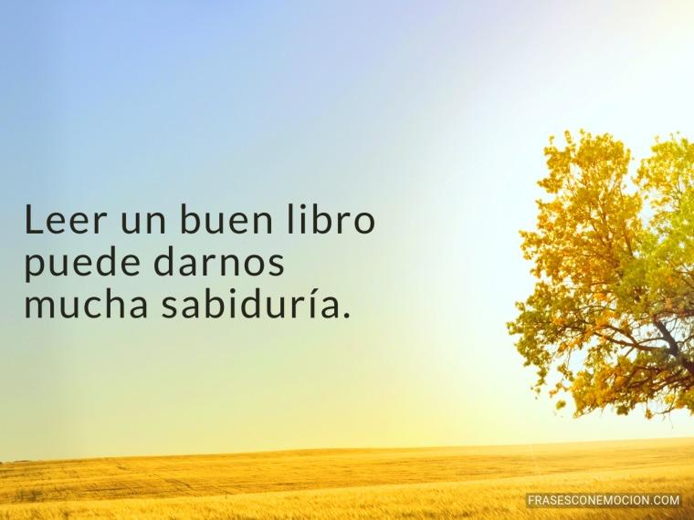 Leer un buen libro...