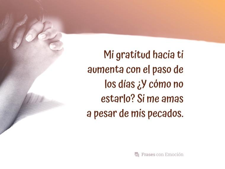 Mi gratitud hacia ti...