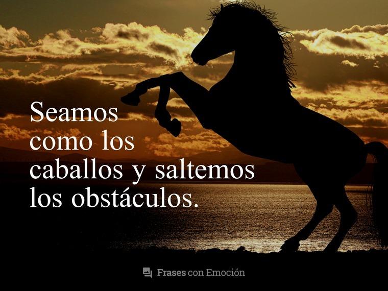 Seamos como los caballos...
