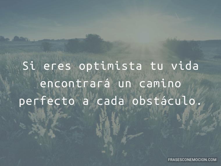 Si eres optimista...
