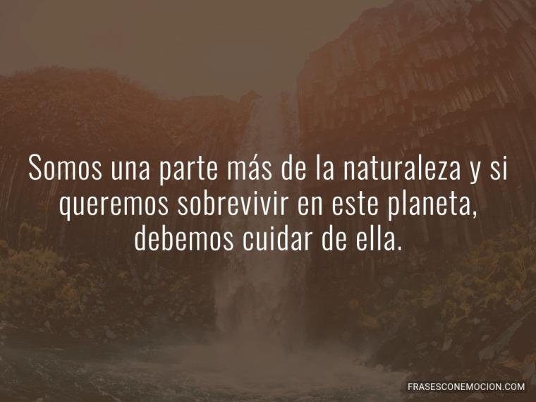 Somos una parte más de la naturaleza...