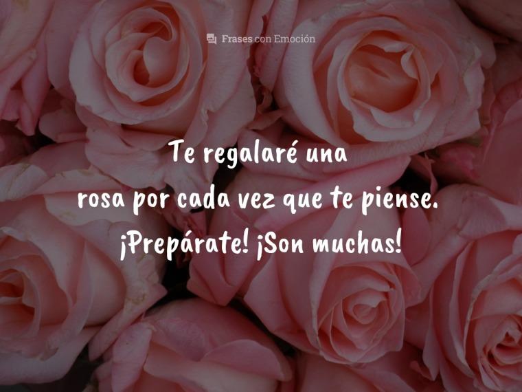 Te regalaré una rosa...