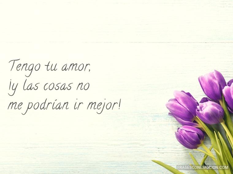 Tengo tu amor...