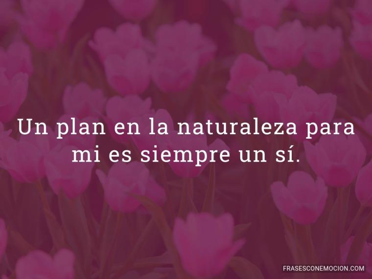 Un plan en la naturaleza...